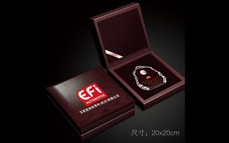 (法国)艾菲发动机零件(武汉)有限公司十周年纪念